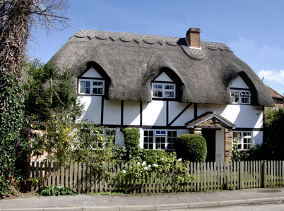 Thatched roof home insurance